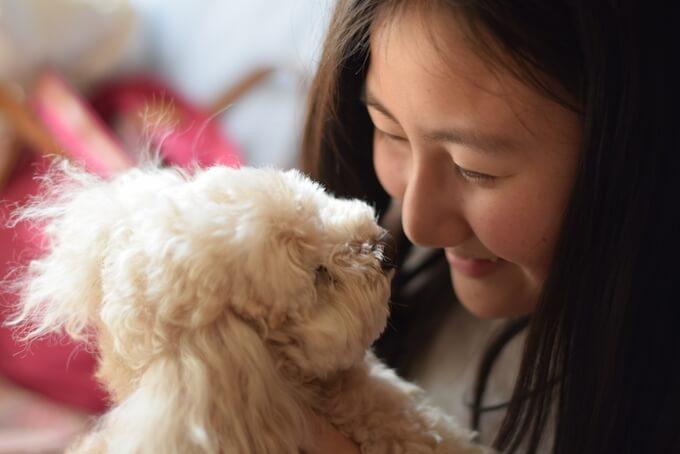 女性と子犬